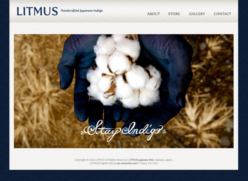 litmus website, design by emi
